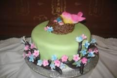 Baby Shower Cake #15