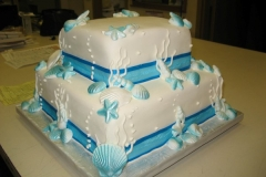 Wedding & Shower Cake #14