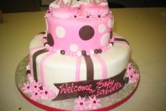 Baby Shower Cake #9