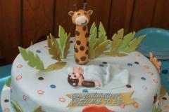 Baby Shower Cake #13