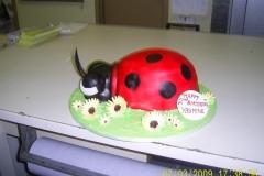 Birthday & Novelty Cake #2
