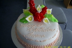 Birthday & Novelty Cake #19