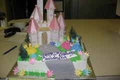 Birthday & Novelty Cake #75