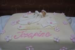 Birthday & Novelty Cake #386