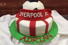 Birthday & Novelty Cake #383