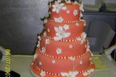 Wedding & Shower Cake #1