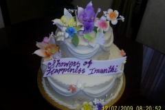 Wedding & Shower Cake #3