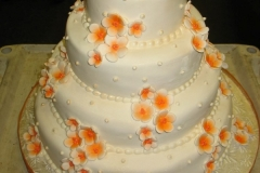 Wedding & Shower Cake #13