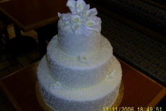 Wedding & Shower Cake #23