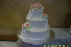 Wedding & Shower Cake #24