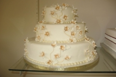 Wedding & Shower Cake #32
