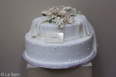 Wedding & Shower Cake #39