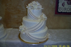 Wedding & Shower Cake #48