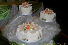 Wedding & Shower Cake #49