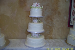 Wedding & Shower Cake #51