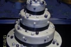 Wedding & Shower Cake #53