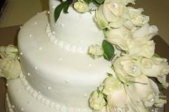 Wedding & Shower Cake #61