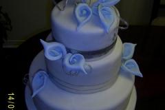 Wedding & Shower Cake #63
