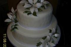 Wedding & Shower Cake #64