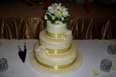 Wedding & Shower Cake #67