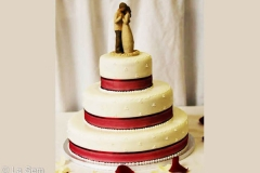 Wedding & Shower Cake #69