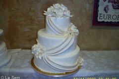 Wedding & Shower Cake #73