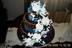 Wedding & Shower Cake #75
