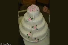 Wedding & Shower Cake #77