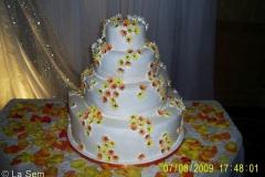 Wedding & Shower Cake #80