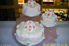 Wedding & Shower Cake #84