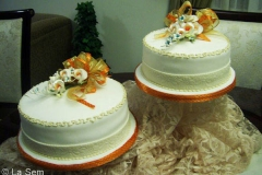 Wedding & Shower Cake #87