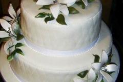 Wedding & Shower Cake #91