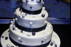 Wedding & Shower Cake #93