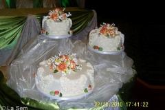Wedding & Shower Cake #95