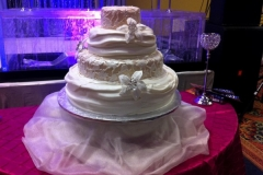 Wedding & Shower Cake #102