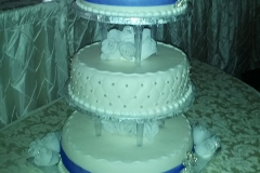 Wedding & Shower Cake #112