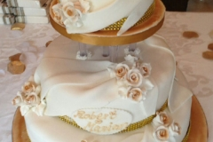 Wedding & Shower Cake #113