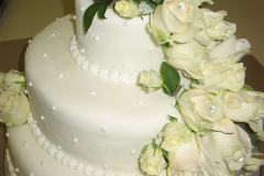 Wedding & Shower Cake #114