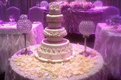 Wedding & Shower Cake #120