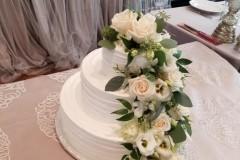 Wedding & Shower Cake #204