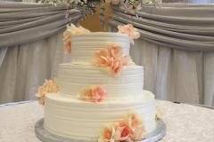 Wedding & Shower Cake #209