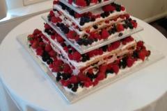 Wedding & Shower Cake #211
