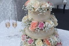 Wedding & Shower Cake #215