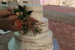 Wedding & Shower Cake #217