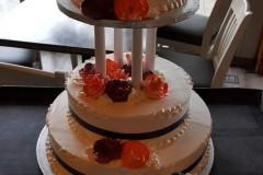 Wedding & Shower Cake #221