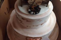 Wedding & Shower Cake #230